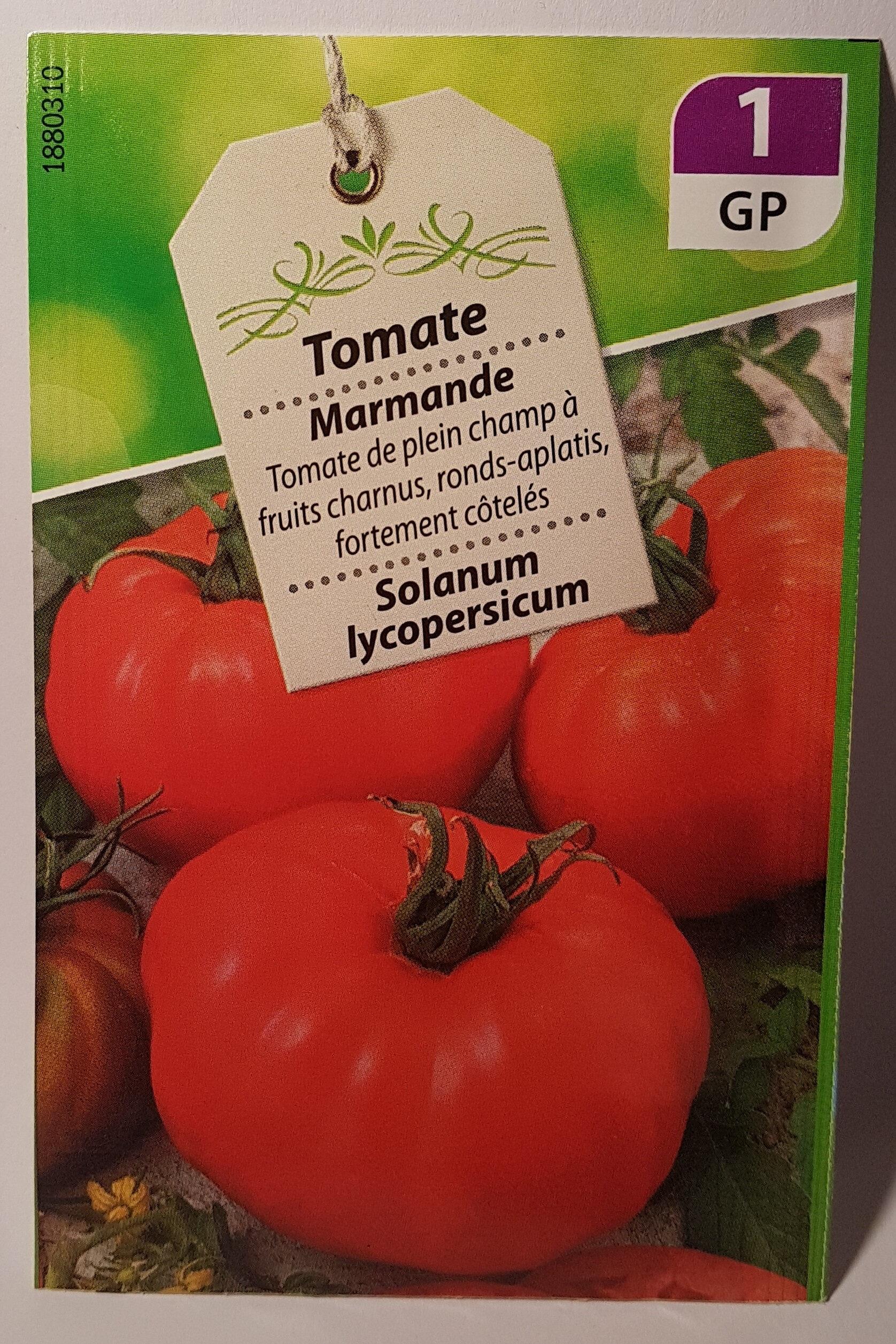 Tomate Marmande - Product - fr