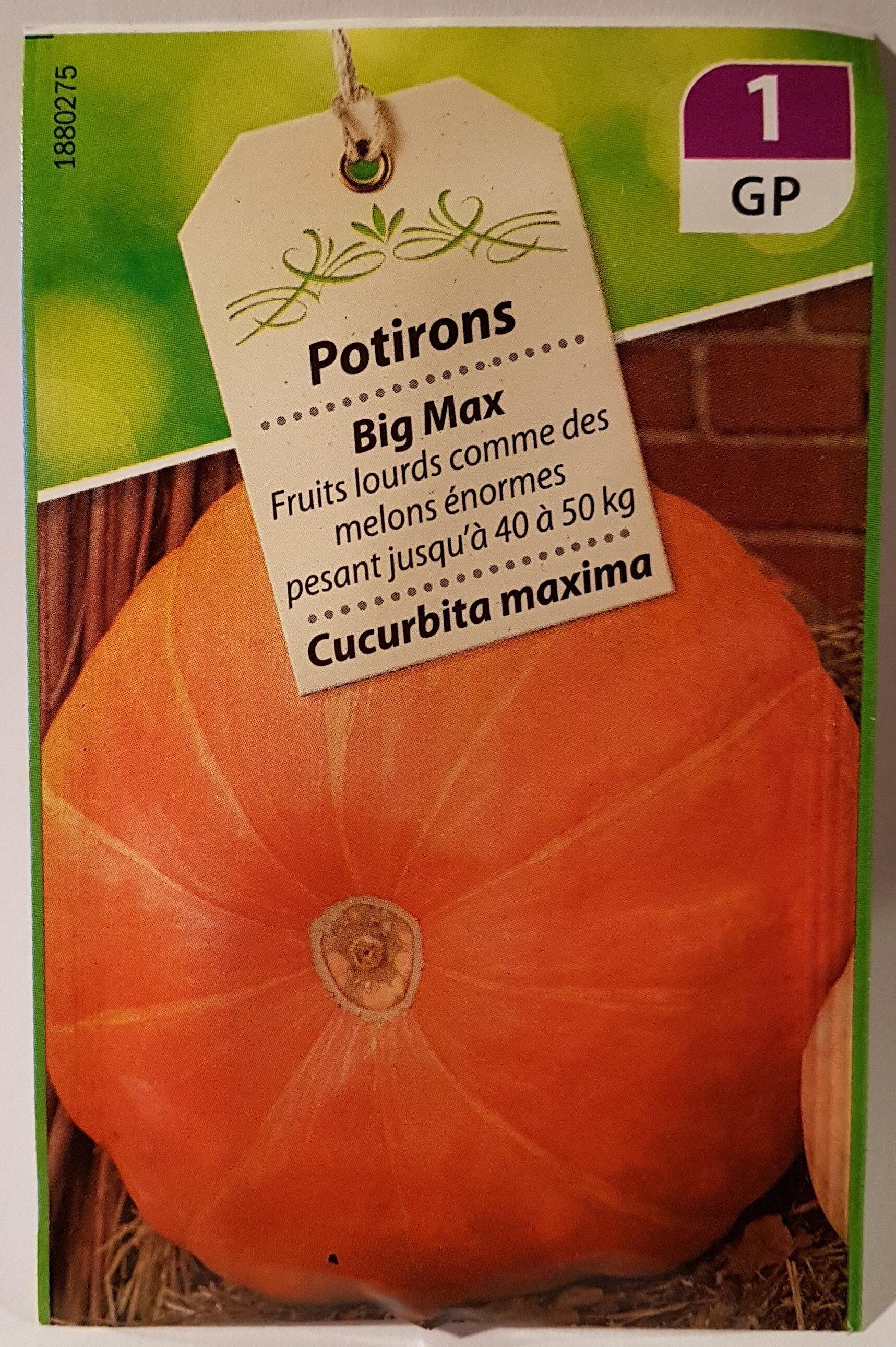 Potiron Big Max - Product - fr