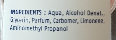 Cien Gel hydroalcoolique pour mains - Ingredients