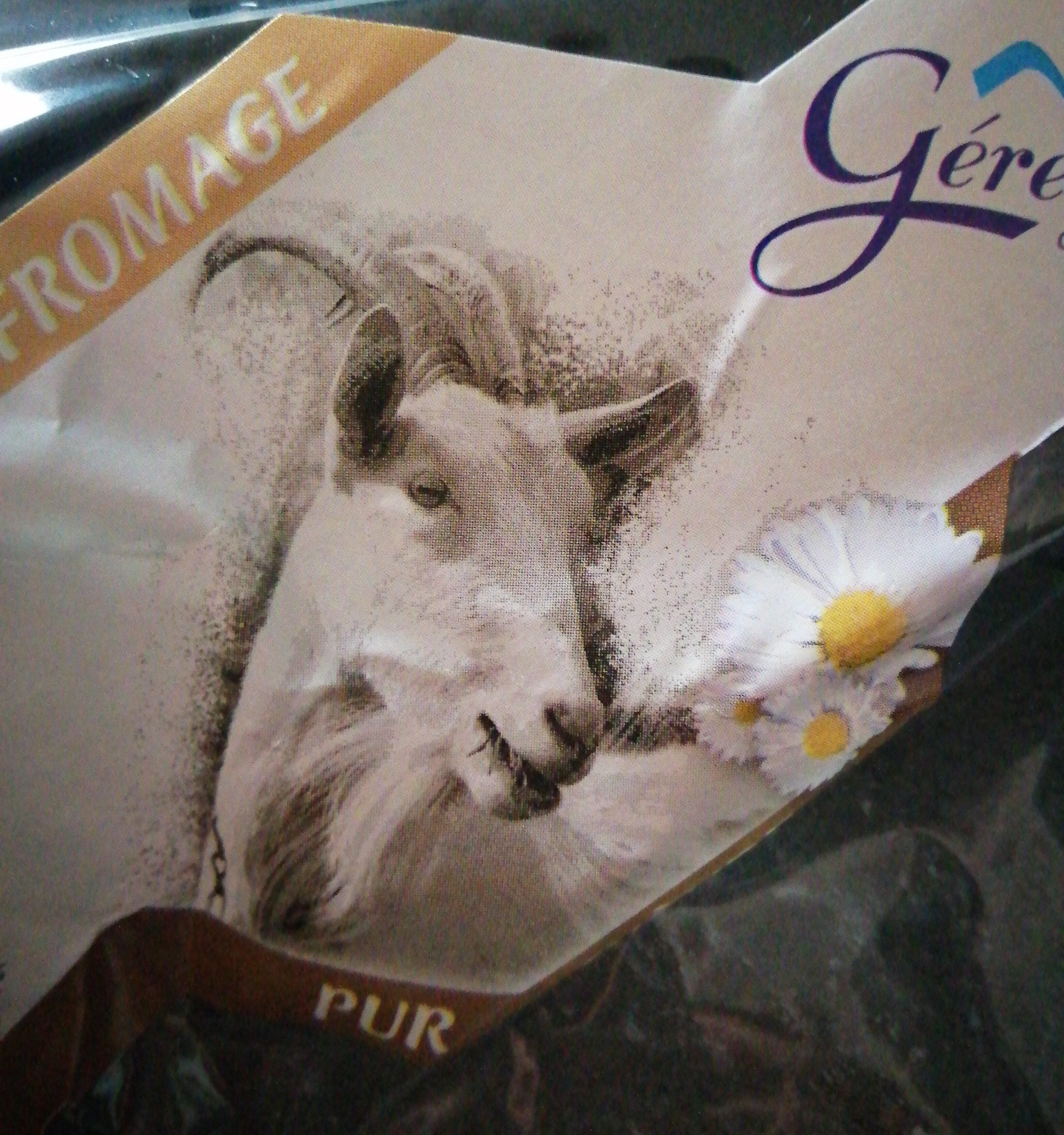 bûche de chèvre - Product