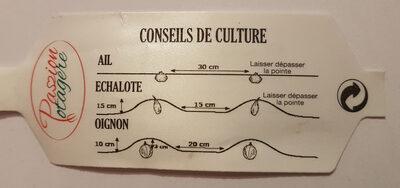 Plants d'Oignon Rouge - Ingredients