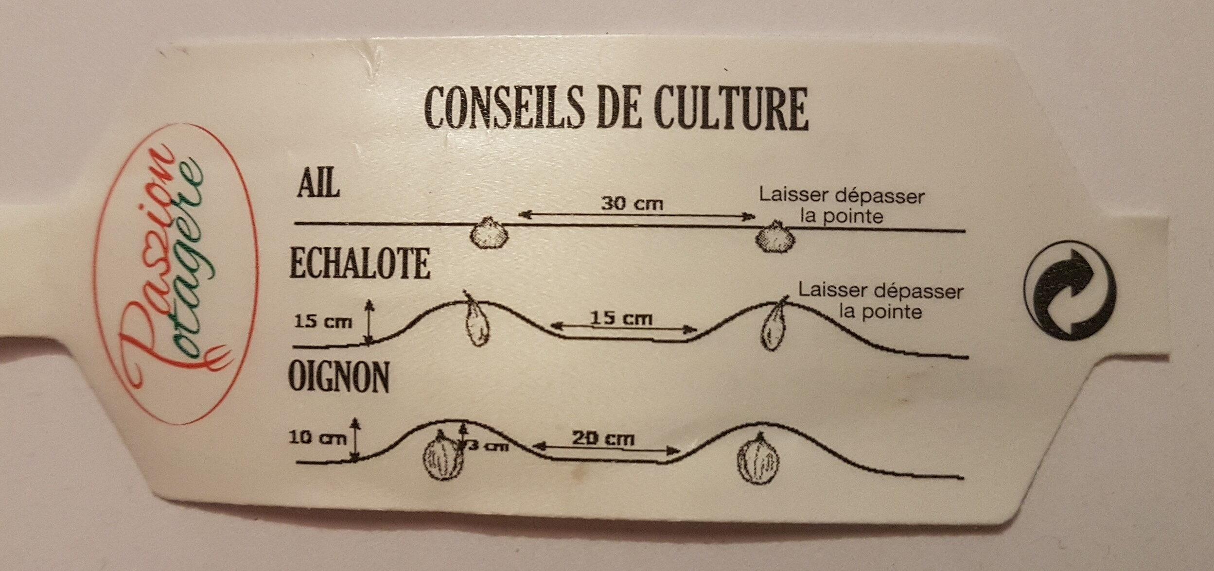 Plants d'Oignon Rouge - Ingredients - en