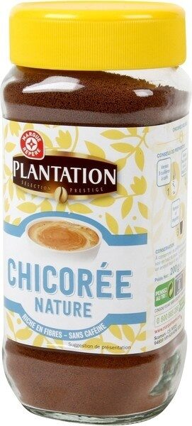 Chicorée nature - Product - fr