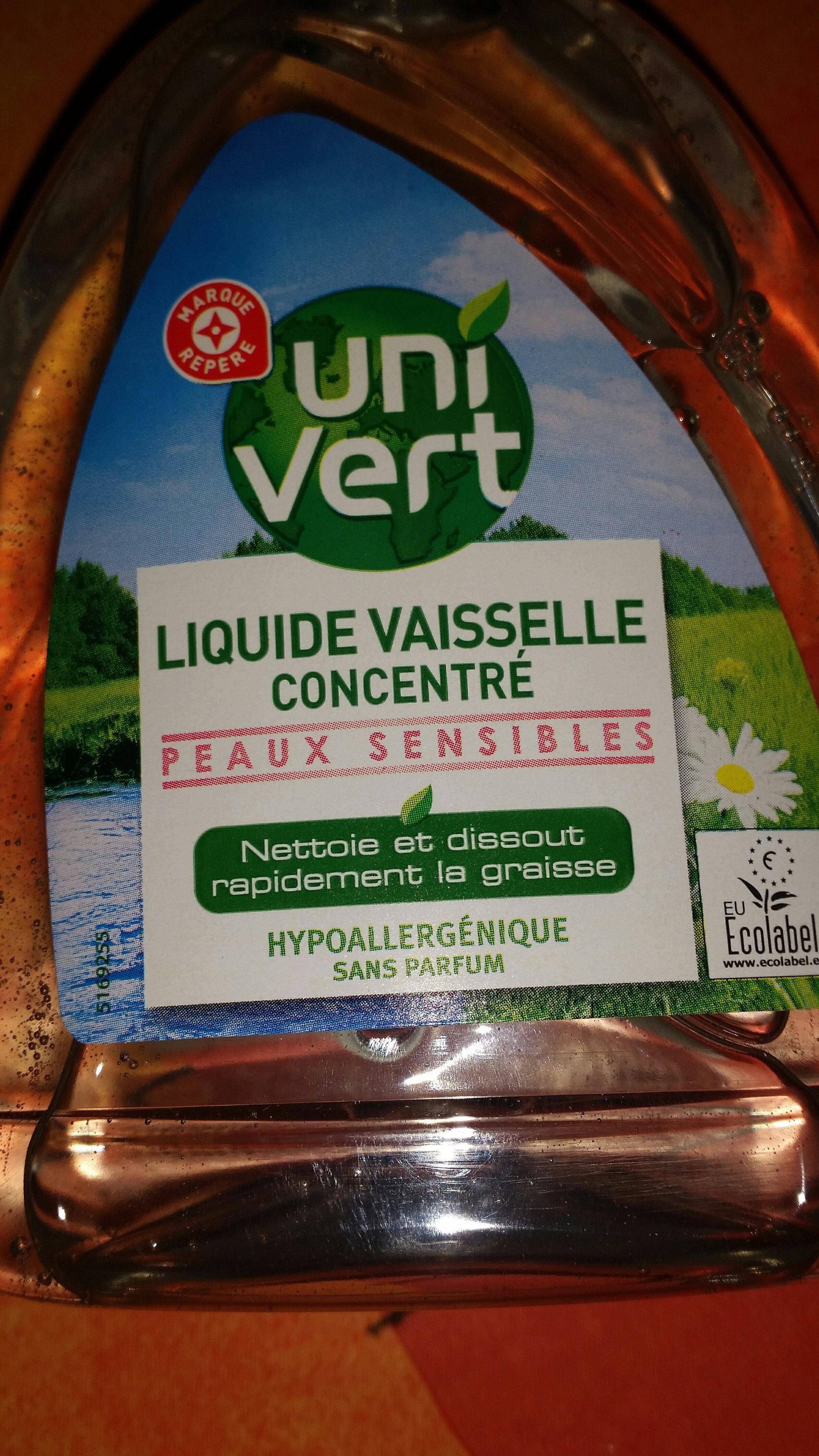 liquide vaisselle concentré - Product