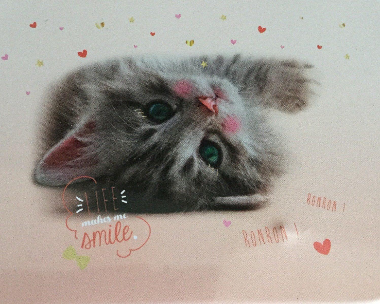 Boite chat mignone - Produit