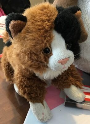 Chat peluche - Product - fr