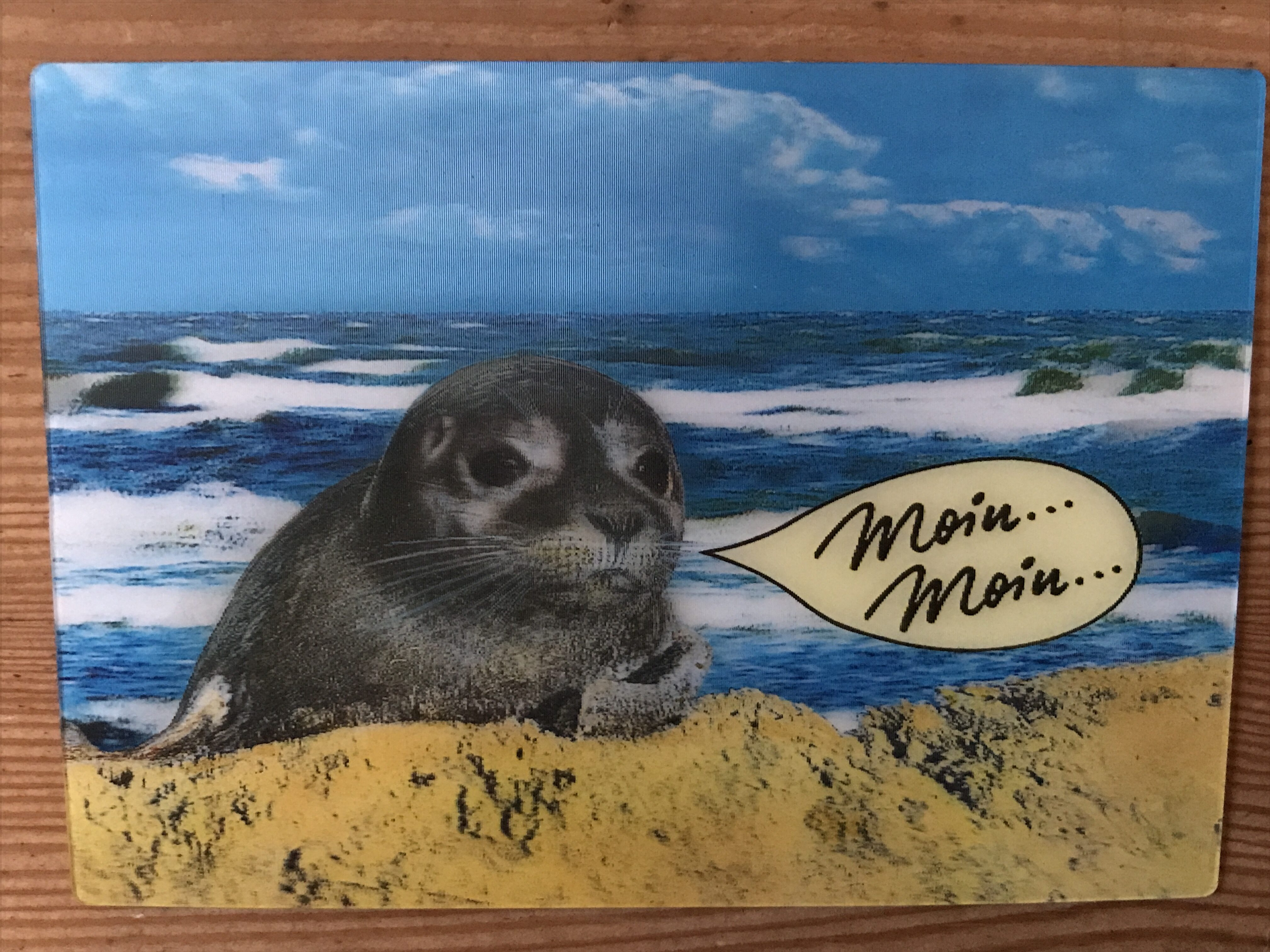 "3D-Postkarte ""Robbe"" - Product - de"