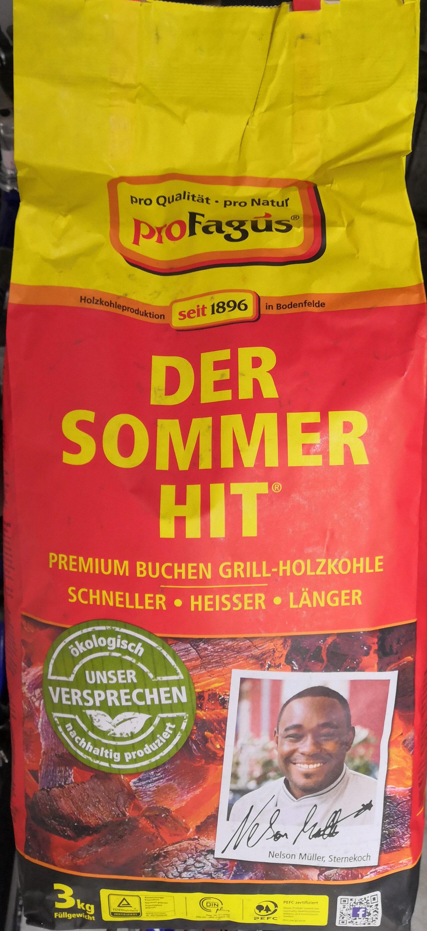 proFagus Der Sommer-Hit Premium Buchen-Grill-Holzkohle - Product - de