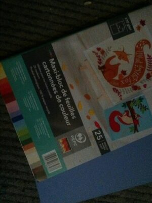 Maxi-bloc de feuilles cartonnées de couleur - Produit