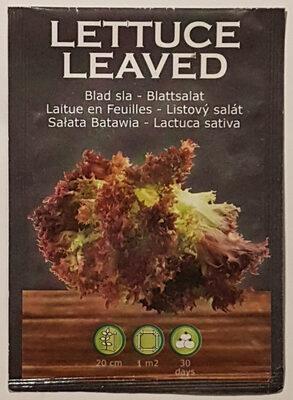 Laitue en Feuilles - Lactuca Sativa - Product - fr
