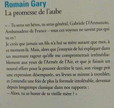 La Promesse De L'aube, Romain Gary - Ingredients